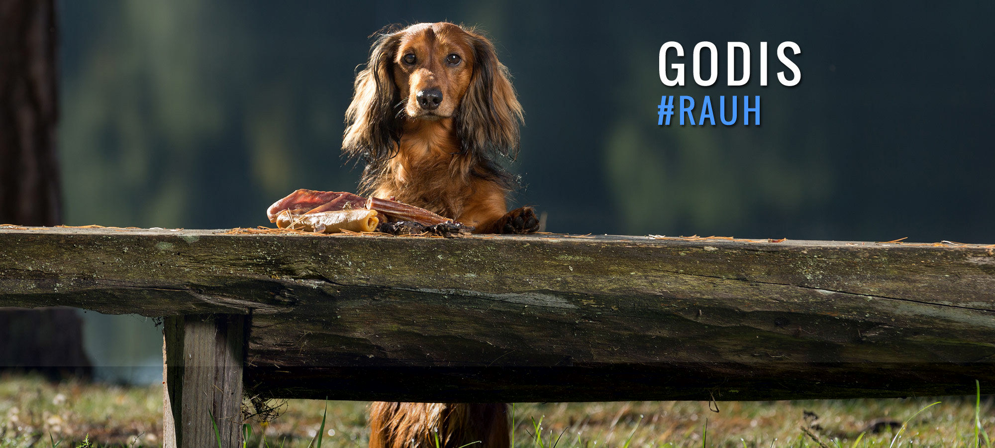 RAUH! Natural Nordic Dog Snacks